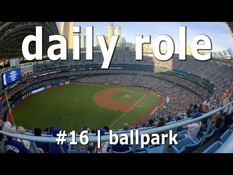 daily role #16 | let's go see the blue jays!