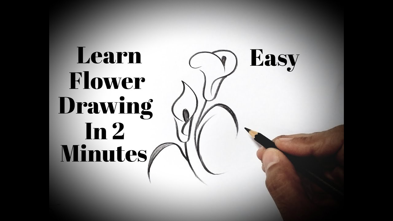 How To Draw Flowers Easy Drawing Flowers With Pencil Easy Tutorial Simple Drawings For Beginners Youtube