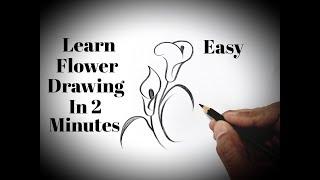 easy drawings pencil flowers simple beginners drawing draw tutorial