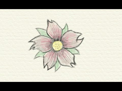 How to draw a flower youtube for How do i draw a flower