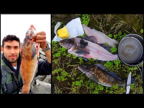 FINAL Day CATCH AND COOK!! Blackberry Butter Fish **SOLO 1,600 Mile Fishing Road Trip**