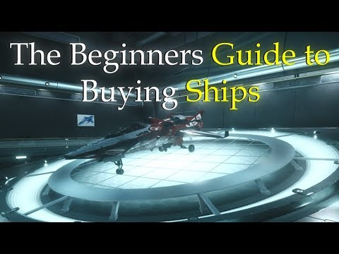 STAR CITIZEN: The Beginners Guide to Buying Ships