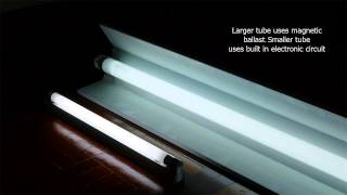 t5 vs t8 fluorescent light
