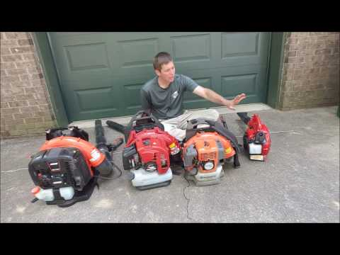 Discussion on buying a blower for lawn care - brand and size
