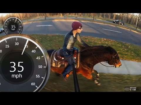 How Fast Is A Horse? 35mph Easy.....
