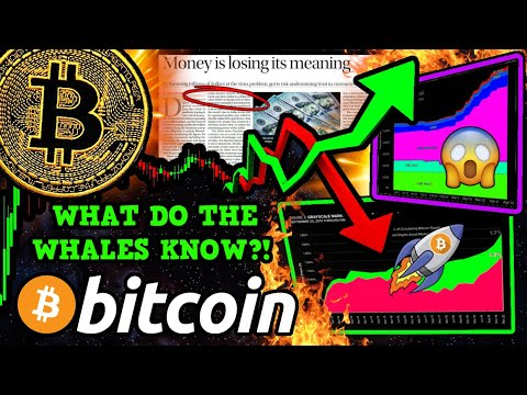 🚨 BITCOIN WHALES ARE DUMPING!!!! BUT... $BTC PRICE IS PUMPING!!?! [what This Means]