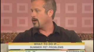 Celebrity Pet Expert Harrison Forbes on Today Show - July 27, 2010