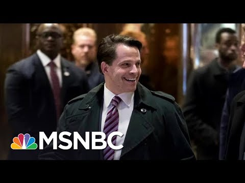 A New Hire For The White House, But Is Scaramucci Needed | Morning Joe | MSNBC