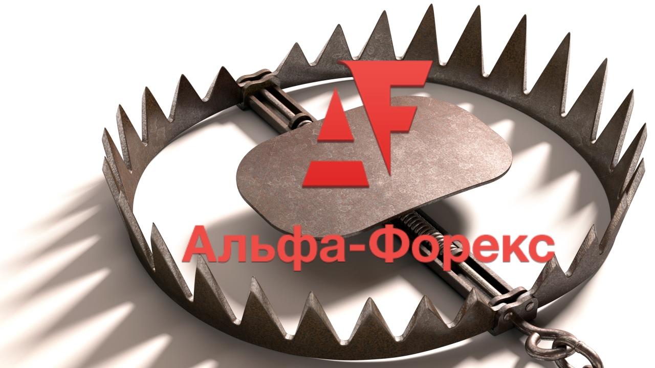 Правила альфа-форекс принцип работы в форекса