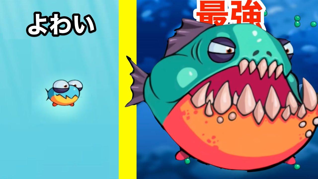 小さい魚が超成長する食べまくりゲームで1位になろう【 Eatme.io 】