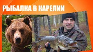 Рыбалка в Карелии Медведица спугнула оленей мы стали очевидцами заплыва