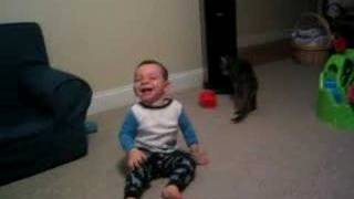funniest baby laugh attack