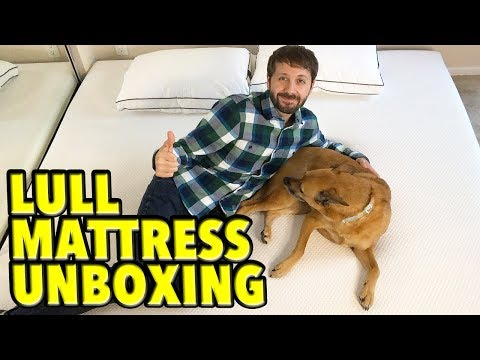 Lull Mattress Unboxing! Is it My Bed or Lucky's?