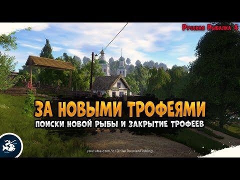 Река Северский Донец • Поиски новых трофеев • Driler - Русская Рыбалка 4