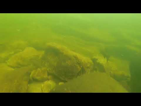 Scuba Diving The Hudson River NY