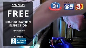 Free Bed Bug Inspections In Phoenix, AZ | Arizona's Best Choice