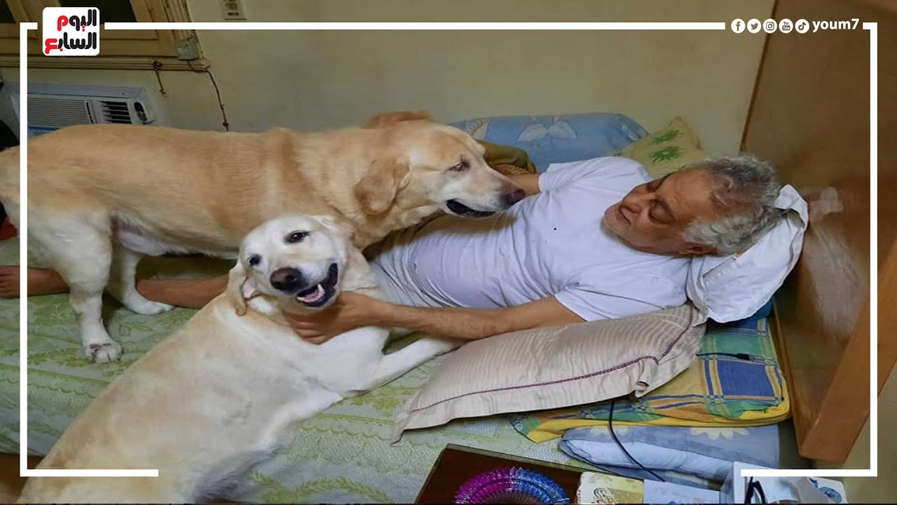 الفنان توفيق عبد الحميد يكشف حقيقة صوره مع الكلاب المنتشرة علي السوشيال ميديا