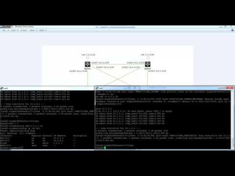 Layer 3 Spine Leaf configuration with OSPF ECMP