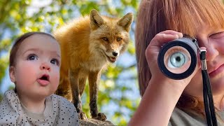 WE FOUND A FOX!!  Family Trip to the Mountains with Adley Niko & Navey! Cabin Vacation with Animals - songs like renee lost boyz