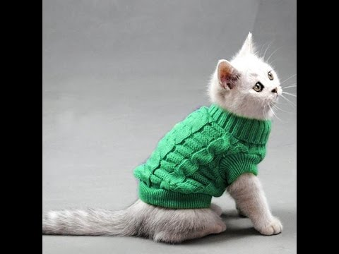Warm Sweater Clothes for Cats