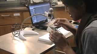 Imaging insect specimens using…