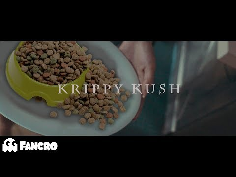 Farruko, Bad Bunny, Rvssian - Krippy Kush (Cover Perros)