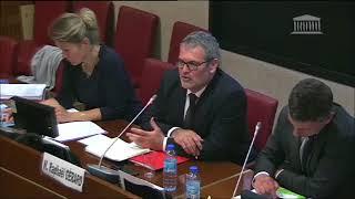 Avis de la Commission des Affaires culturelles sur le Projet de loi ELAN