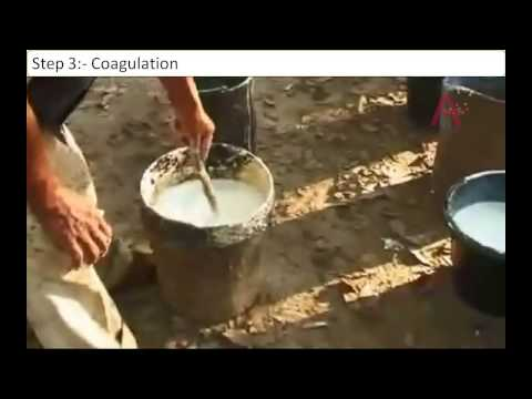 Making of Natural Rubber