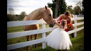 The Wedding of Erin and Mat - Dewberry Farm - Kernersville,NC