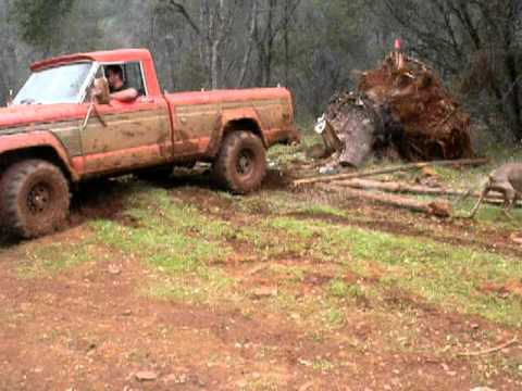 Jeep Pickup pulling out a tree stump