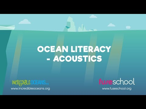 Sound in the Sea - Ocean Acoustics | Ocean Literacy | FuseSchool