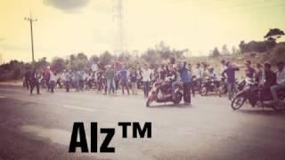 Team alz