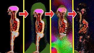 UN HUMAIN DANS UN RÉACTEUR NUCLÉAIRE - Simulation par ordinateur de réactions chimiques !