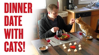 Dinner Date with Cats! (Behind the scenes) thumbnail
