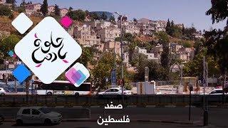 صفد - فلسطين - حلوة يا دنيا