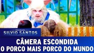 Câmera Escondida (10/04/16) - O Porco mais Porco do Mundo