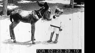 Spain, 1932