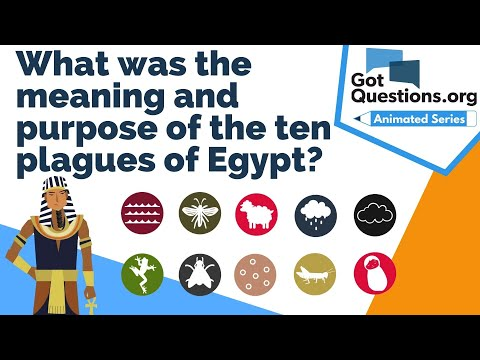 What Was The Meaning And Purpose Of The Ten Plagues Of Egypt Gotquestions Org He, him, she and her are singular third person pronouns. what was the meaning and purpose of the