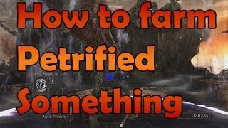 How to farm Petrified Something in Dark Souls II