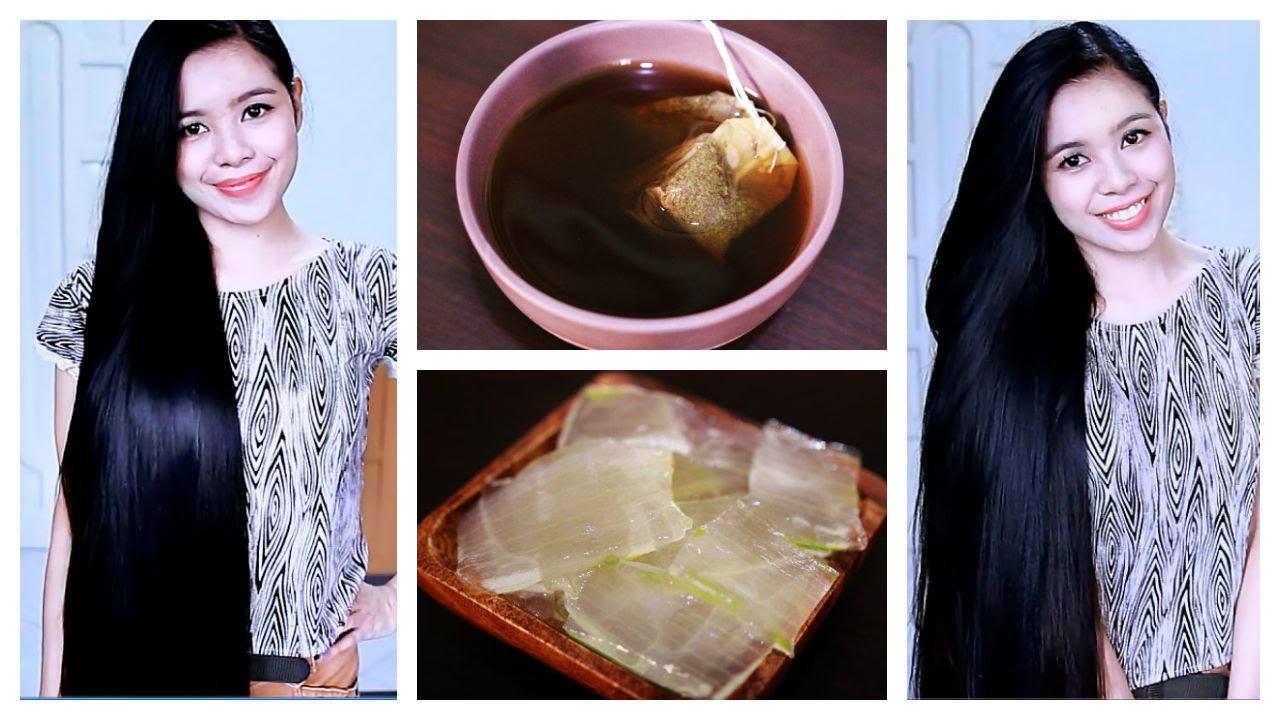 Diy Green Tea And Aloe Vera Gel Shampoo For Hair Growth