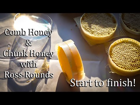 Ross Round Chunk Or Comb Honey, Step By Step Demonstration And Explanation. Marketable Honeycomb.