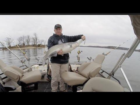 Catfishing on Lake of the Ozarks #8 (1-21-17)