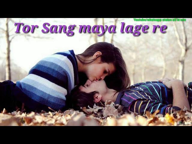 मोहि डारे छत्तीसगढ़ी गाना | अमरिया म ना | AMARAIYA MA NA | Mohi Dare | Chhattisgarhi Whatsapp Status
