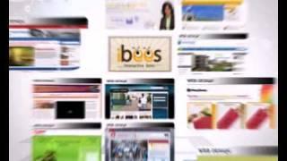 Demo Video Interactive Bees web design & web development company Delhi