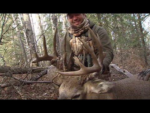 Whitetail Deer Hunting-[2015]