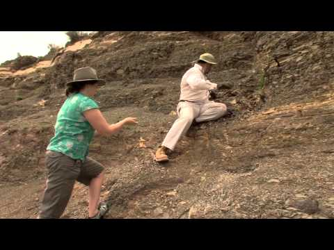 Clues to the End-Permian Extinction
