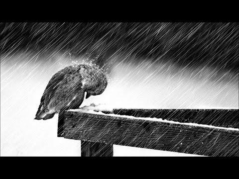 Sad Piano & Violin Music Compilation ♥♫ Beautiful Film Music