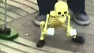 Repeat youtube video Amazing dancing skeleton video flash   Funny videos   FunOnly net