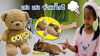 ตุ๊กตาหมีกับเฮงเฮงชอบฟัดตุ๊กตา ชิวาว่าขี้ดื้อ l น้องใยไหม kids snook