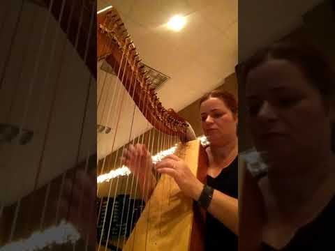 Harp playing for Zen Yoga Class - December 3, 2017